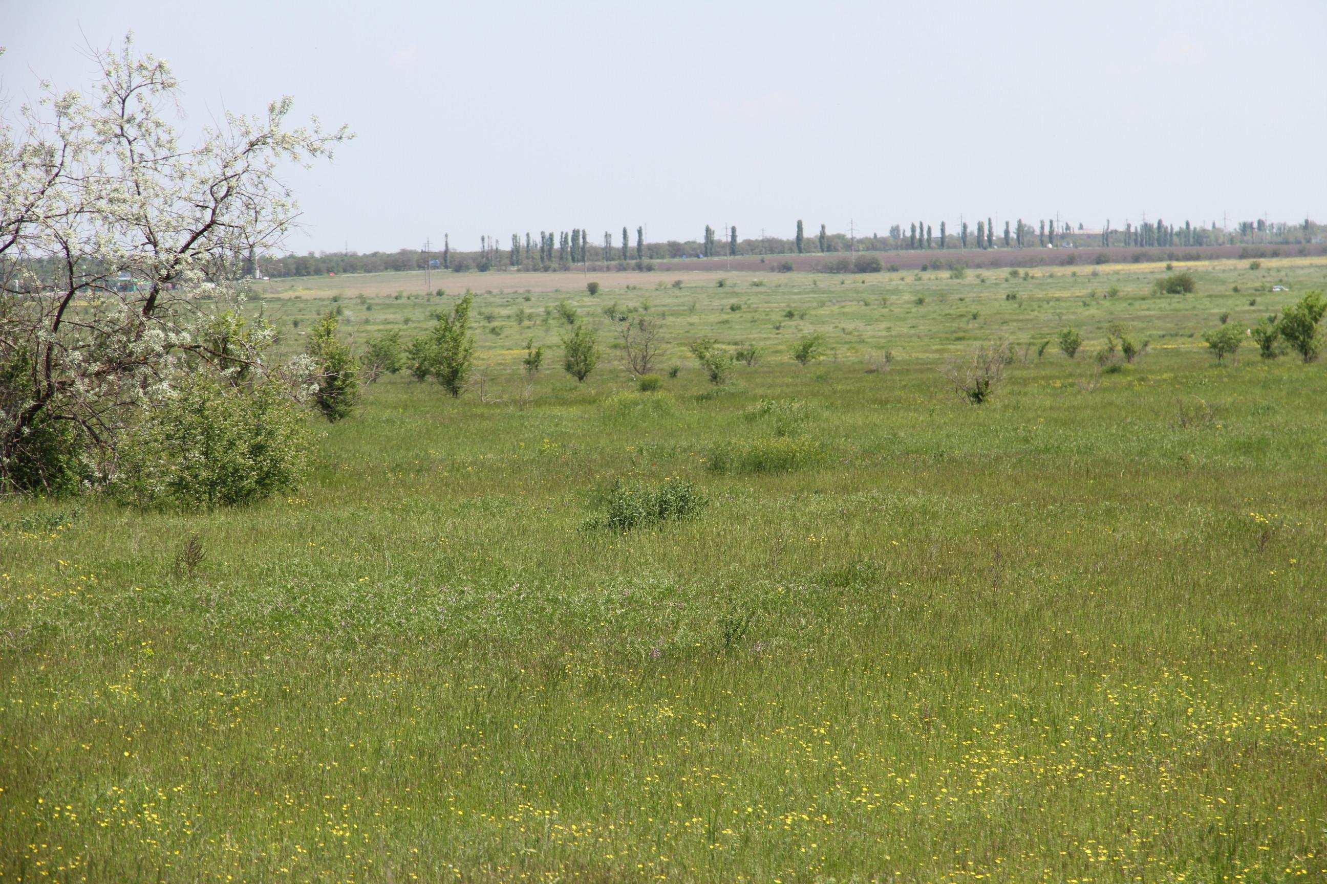 В Николаеве появится новое кладбище за Херсонским шоссе (ФОТО) (фото) - фото 5